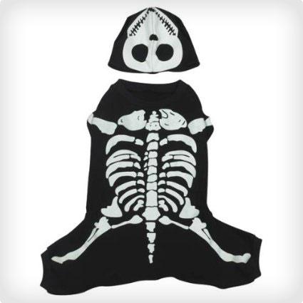 Bones Dog Costume