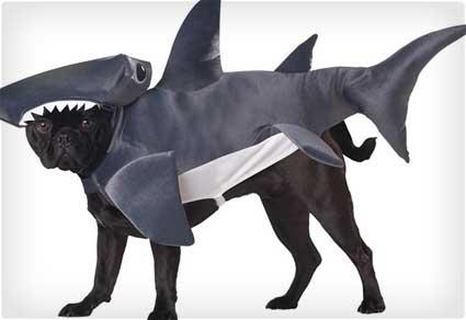 Hammerhead Shark Dog Costume