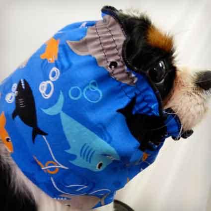 Shark-Dog-Snood