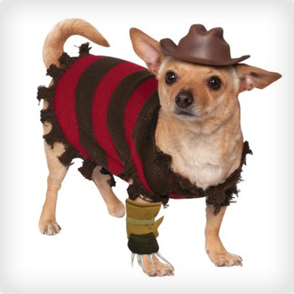 Freddy Kreuger Dog Costume