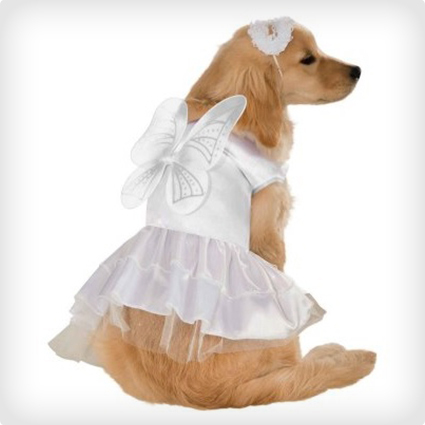 Heavenly Angel Pet Costume