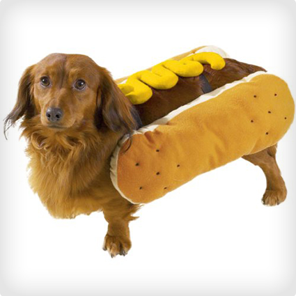 Hot Diggty Dog Costume