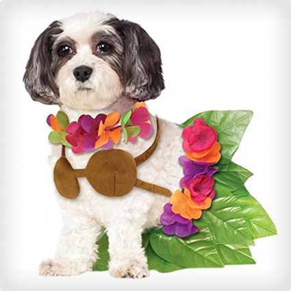 Hulu Girl Dog Costume