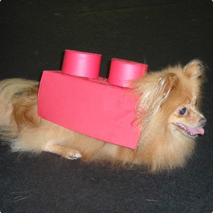 Lego Brick Dog Costume