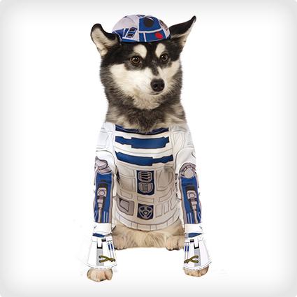 R2-D2 Dog Costume