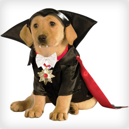 Vampire Dog Costume