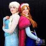 Queen Elsa of Arendelle Adult Frozen Costume